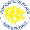 logo du club Archive Hockey Nord Est