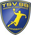 logo du club Team Sport Vicinois 88 Handball