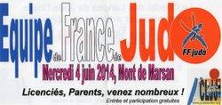 L'équipe de France de Judo à Mont de Marsan le 04 juin 2014.