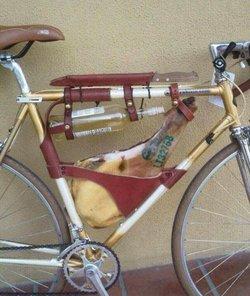 La randonneuse d'un cyclotouriste !