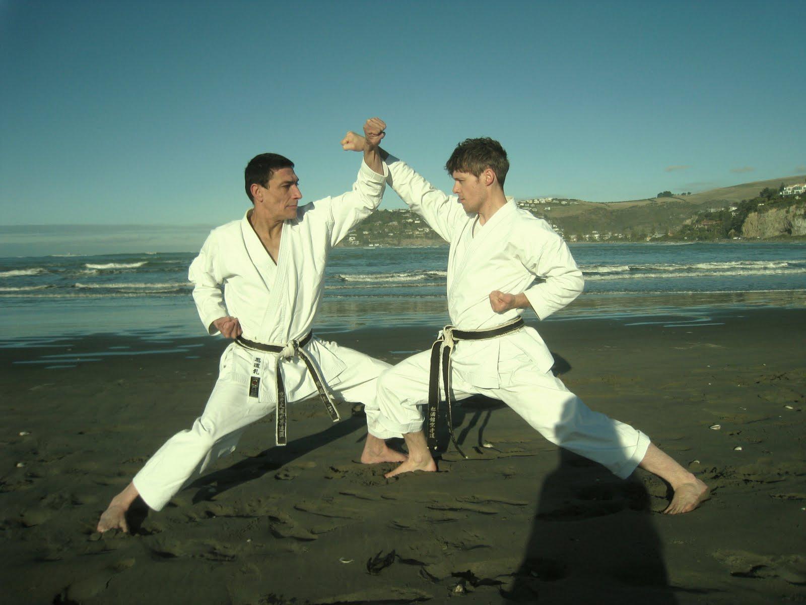 """Résultat de recherche d'images pour """"gohon kumite karate"""""""