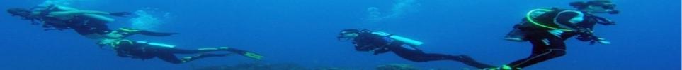 CLUB DE PLONGEE LA PALANQUEE LAUDUNOISE : site officiel du club de sports sous-marins de LAUDUN - clubeo