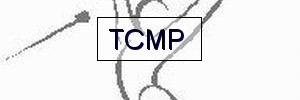 Twirling club de Moriani plage  : site officiel du club de twirling baton de MORIANI PLAGE - clubeo