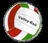 logo du club AG Volley Club