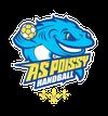 Handball AS POISSY