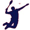 logo du club BADMINTON NOEUXOIS