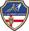 logo du club Balonmano Bardenas