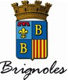 logo du club Tennis de table Brignolais