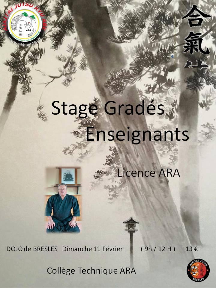 Stage Gradés bresles 11 02 18 Définitif.jpg