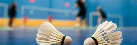 Association Presloise de badminton : site officiel du club de badminton de Presles - clubeo