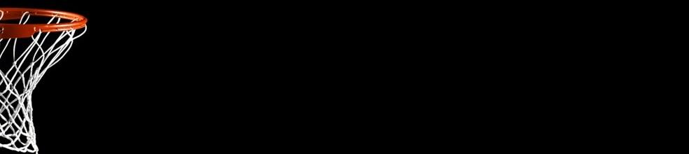 Basket Sud Vilaine (FEREL, CAMOEL, PENESTIN) : site officiel du club de basket de CAMOEL - clubeo