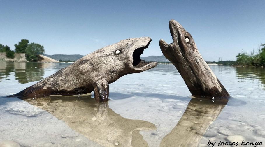 Sculpture bois naturel