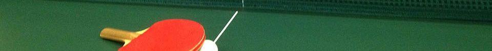 l'Elan Sportif de Saint-Gence : site officiel du club de tennis de table de ST GENCE - clubeo