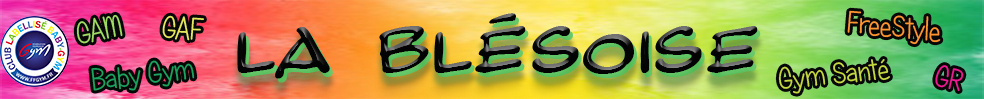 La Blésoise : site officiel du club de gymnastique de BLOIS - clubeo