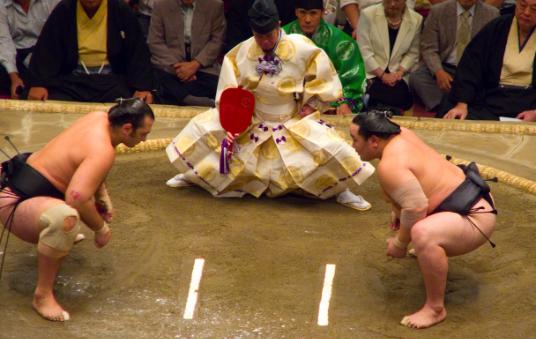 01-sumo.jpg