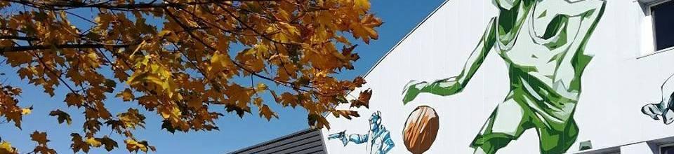 Saint Dié Vosges Basket : site officiel du club de basket de SAINT DIÉ DES VOSGES - clubeo