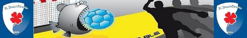 SHPBonnétable : site officiel du club de handball de BONNETABLE - clubeo