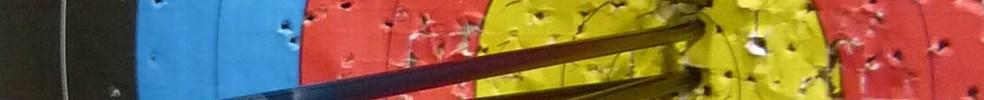Tir à l'Arc La Châtaigneraie : site officiel du club de tir à l'arc de LA CHATAIGNERAIE - clubeo